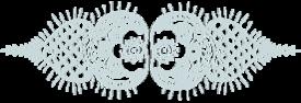 Shani Raviv Logo